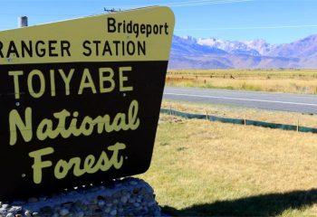 Bridgeport Ranger Station toiyabe national forest triple net lease property for sale john skinner real estate investment nnn leasing